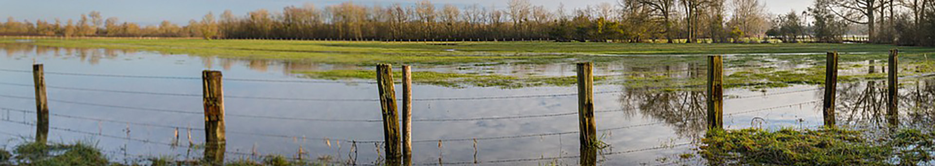Flooding in Local Fields