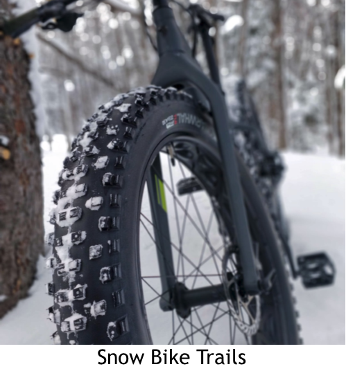 Front tire of fat bike leaning on tree