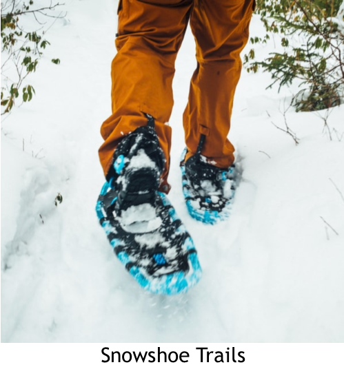 Blue snowshoes in snow