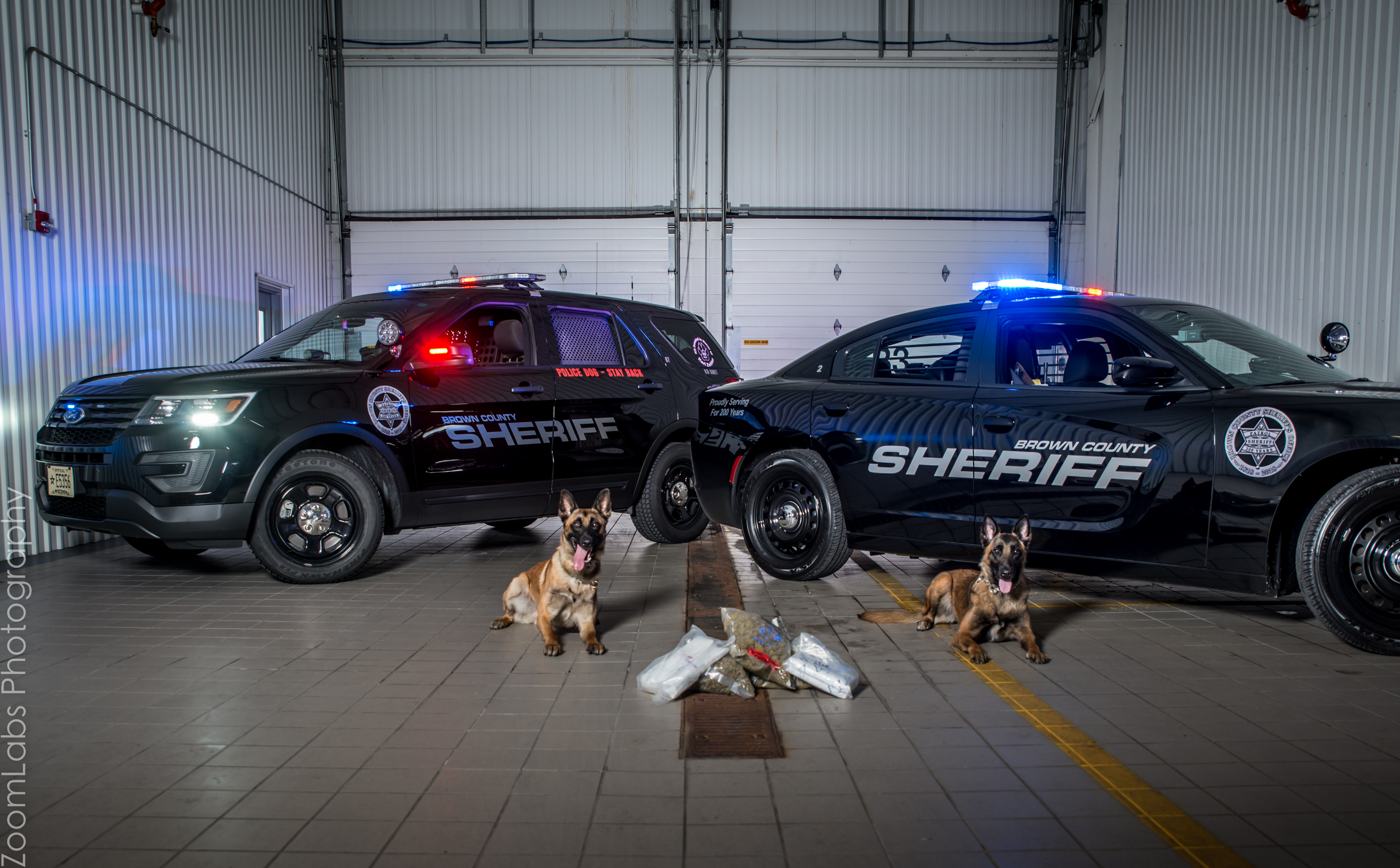 K9s with drugs in front of squad car